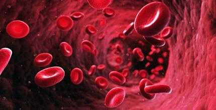 globuli-rossi-analisi-lipidomica